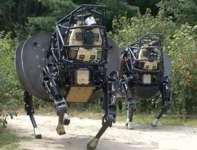 Vídeo da mula-robô